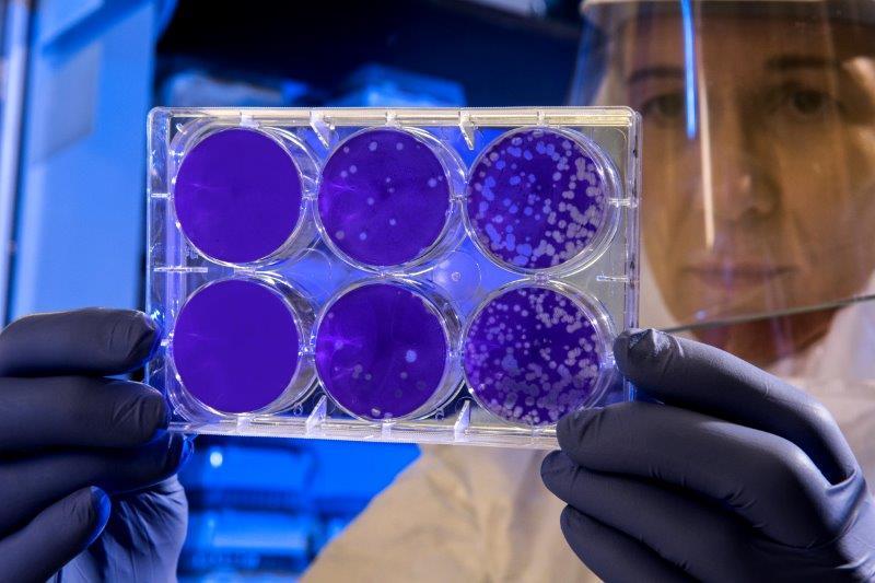 オゾン除菌装置の効果とは?99.9%のウイルス死滅率と各種メリットを両立する優れた除菌ソリューション