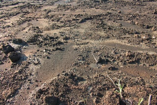 汚染土壌処理作業を行うために法律上必要な施設とは?テント・仮設屋根の条件と種類